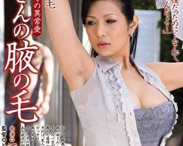 酒井千波(酒井ちなみ)juc系列番号juc-067封面 妈妈的腋毛